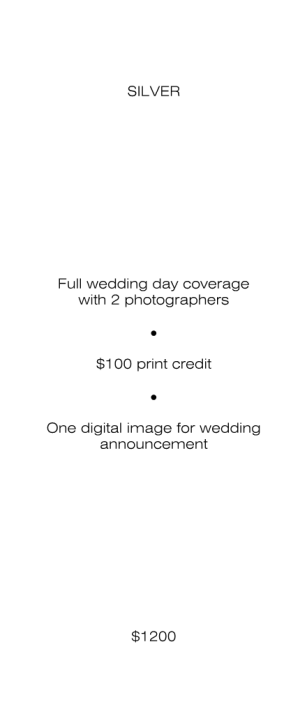 Wedding Price Packages - Color-2 Page 004